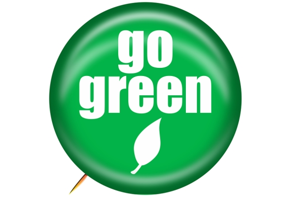 Benefits of Going Green for Your Pets in San Jose