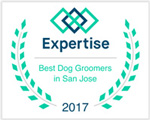 Best Dog Groomers in San Jose